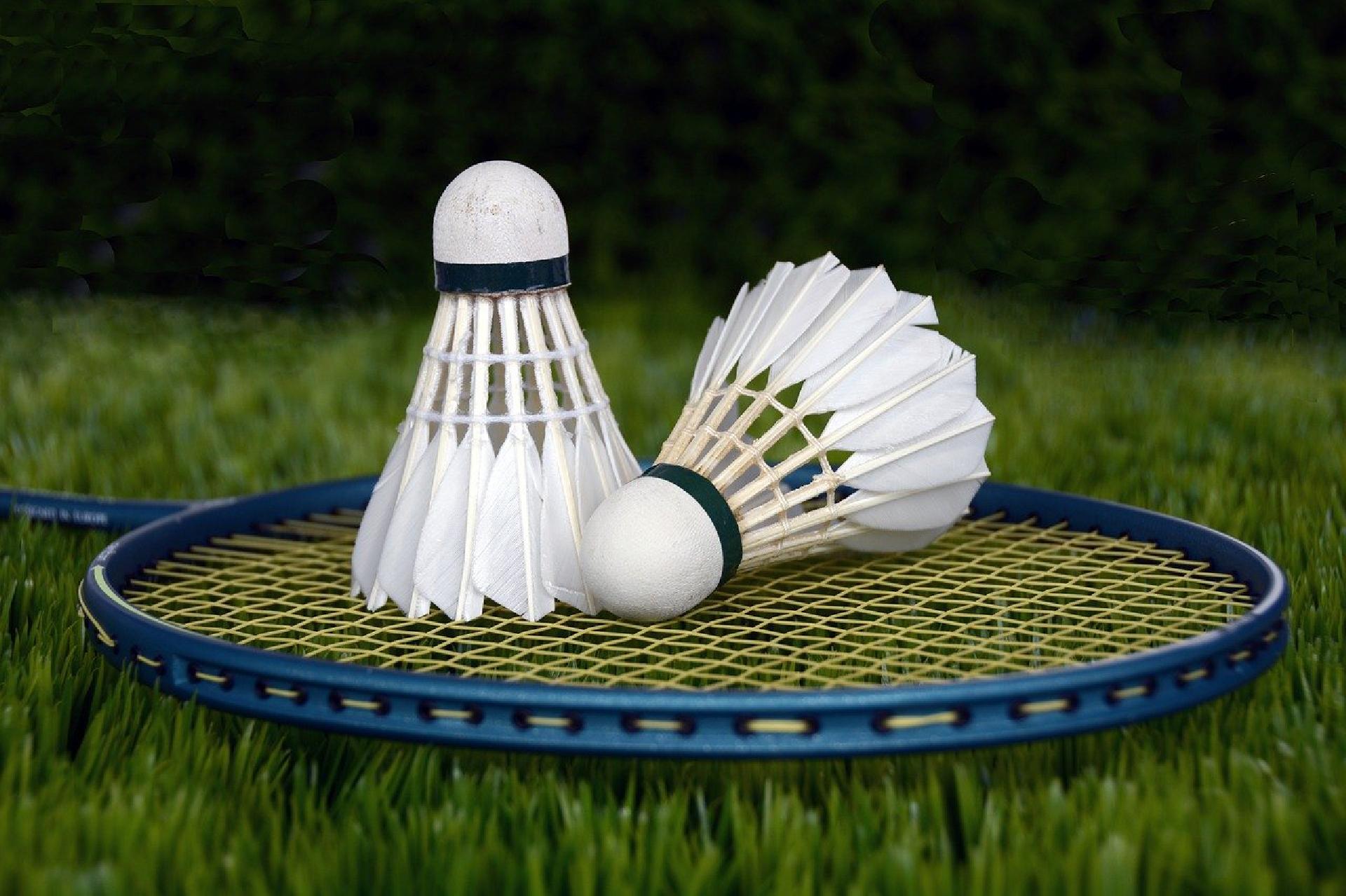 Image of Badminton Bags