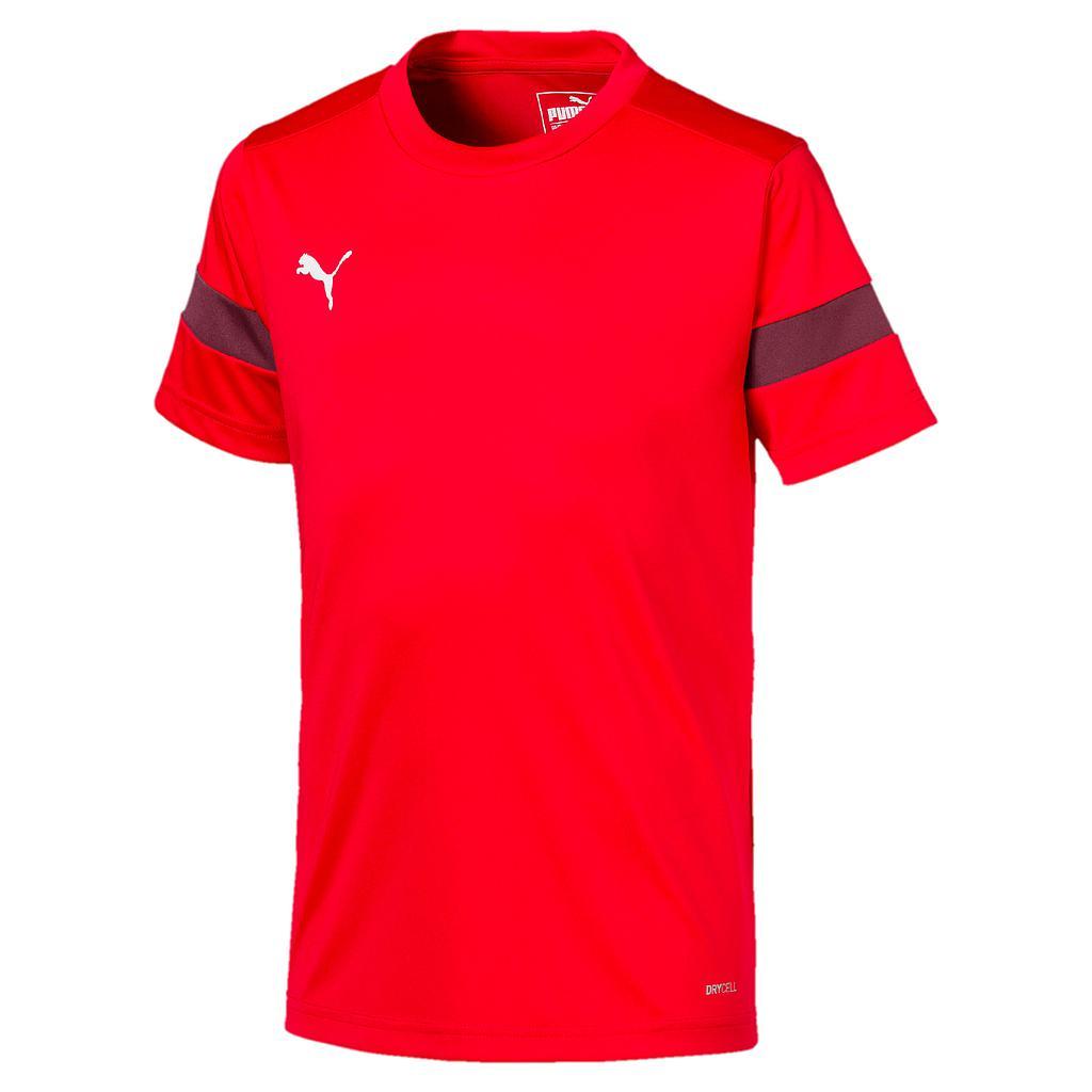 Puma ftblPLAY Training Shirt