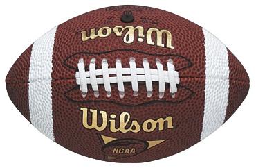 Wilson NFL Micro American Football