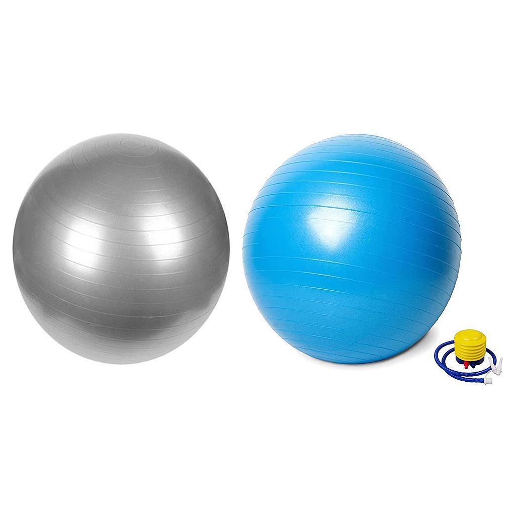 Vector X Swiss Gym Ball